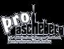 Logo Pro Ascheberg